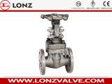 Válvula de porta de extremidade de flange de aço forjada