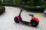 Venda quente 2016 Jinyi Scooter Eléctrico 800W Citycoco Scooter (JY-ES005)
