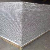 Panneau en aluminium d'âme en nid d'abeilles de poids léger (HR80)