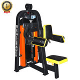 Fitness Equipment Assentado Lateral Raise for Indoor Commercial Gym
