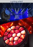 Nueva luz grande ligera principal móvil del ojo del ojo LED de la abeja del zoom de la llegada 19*15W RGBW 4in1 para el partido del acontecimiento