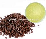 Auszug-Puder der Fabrik-Zubehör-reines natürliches Koffeinsäure-99%