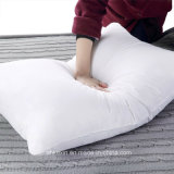 Home Textile White Color Cotton Pather Pather Pillow