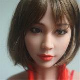 [165كم] هند مثير بنات صور بلاستيكيّة [بوسّي] بالغ دمية