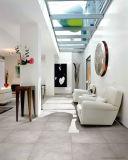 Fábrica de Foshan Mais recente Cimento Design Six Face Ceramic Floor Tile for Airport