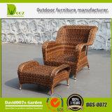 Insieme esterno del salotto del sofà del giardino della mobilia