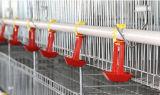 Клетки птицы оптовой продажи оборудования цыплятины поставщика Китая для быть фермером цыпленка бройлера