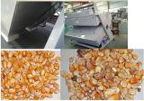 Excellente qualité et bon riz des graines de CCD de service après-vente, trieuse de couleur de courroie