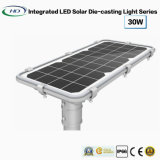 garten-Licht der Mikrowellen-30W Solardruckgießender induktions-LED
