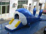 Trasparenza gonfiabile della balena, trasparenza dei bambini da vendere