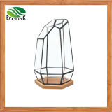 Pot van de Installatie van het glas & van het Bamboe de Geometrische Succulente