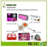 옥수수 속 LED 칩 10W 20W 30W 50W 100W는 백색 차가운 백색 RGB 고성능 LED 칩을 데운다