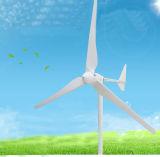 Precio horizontal comercial del diseño del molino de viento de la turbina de viento del eje 2kw estilo rico de la experiencia del nuevo