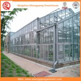 설치를 위한 다중 경간 유리제 온실