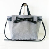 Heißer Entwerfer-modische Dame Canvas Tote Handbags (NMDK-052207)