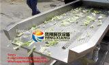 Máquina de desecación de la lechuga de la vibración del precio de fábrica FT-1800, fruta y verdura Dehydrater