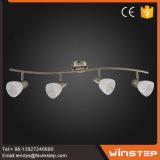 El titular europeo moderno estilo de precio de fábrica de hierro 4 20W Punto de luz de los precios en China