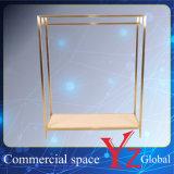 Estante de la promoción del estante de la exposición del estante de la percha del estante de visualización del soporte de visualización del acero inoxidable del estante de visualización (YZ161809)