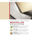 Nieuw Ontwerp 600*900mm de Tegel van het Porselein van de Steen van het Graniet voor Vloer en Muur (X96A012)