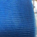 Blaues dehnbares HDPE gestrickte Obstbaum-Filetarbeit