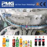 Machine de remplissage gazéifiée par bouteille parfaite de boissons de boisson