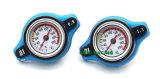 De veilige ThermoRadiator GLB met de Temperaturen van het Water meet 1.1/1.3/0.9 Staaf