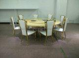 現代丸背の余暇の椅子のステンレス鋼の椅子の夕食の椅子
