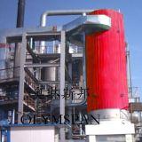 Calentadores de fluido térmico vertical