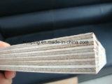 Contre-plaqué du faisceau 12-18mm de peuplier