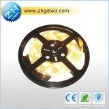 Bande LED SMD (DT3528 5M3528D60-24)