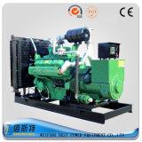 gruppo elettrogeno del gas della natura 300kw con il LNG GPL CNG