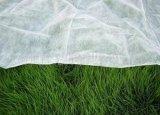 정원에 있는 종묘장 부대에 사용되는 PP Spunbonded 부직포