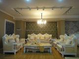 Modernes ledernes Sofa (HM8026)