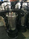Nouveau type submersible électrique des pompes à eau avec interrupteur à flotteur, 0,75 kw