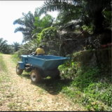entraîneur de dumper de ferme de palmier à huile 2t