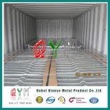 Galvanizzato o il PVC ha ricoperto 358 Formica-Arrampica l'alta barriera di sicurezza