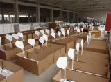 Precios horizontales chinos fuertes de las turbinas de viento 2500W de la alta calidad