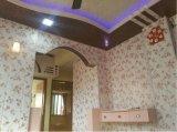 Panneau de plafond de estampage chaud coloré de panneau de mur de PVC de matériau de construction 6*300mm