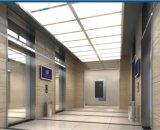 Ascenseur à passagers sans machinerie avec technologie allemande (TKWJ-RLS106)