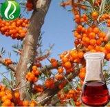 Vrac Seabuckthorn Berry Oil Factory