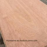 Madera contrachapada de la cara del eucalipto de la madera para el mercado de América