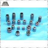 carbure cimenté Dies-Tungsten Dies-Tungsten carbure Carbure (01)