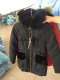 Повелительница Длинн Тип Вниз Куртка, Stock куртки, оптовые куртки