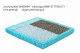 متحمّل [لونغ-لستينغ] مستقلّة [بوكتد] [إينّرسبرينغ] وحدات يستعمل لأنّ غرفة نوم أثاث لازم
