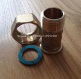 Europäischer Qualitätsmessing schmiedete Wasser-Messinstrument-Nippel (AV9090)