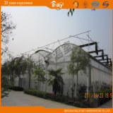 Polycarbonate Sheet Wall를 가진 튼튼한 Film Roof Greenhouse