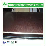 Construction를 위한 E1/E2 반대로 Slip Shuttering Plywood 또는 Shuttering Plywood/Film Faced Plywood