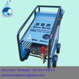 냉수 고압 물 분출 세탁기술자 휴대용 차 세탁기