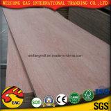 Comercial Venta caliente madera contrachapada con alta calidad y precio de la competencia