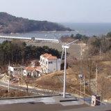 Residential를 위한 작은 Wind Power Generator 3000W